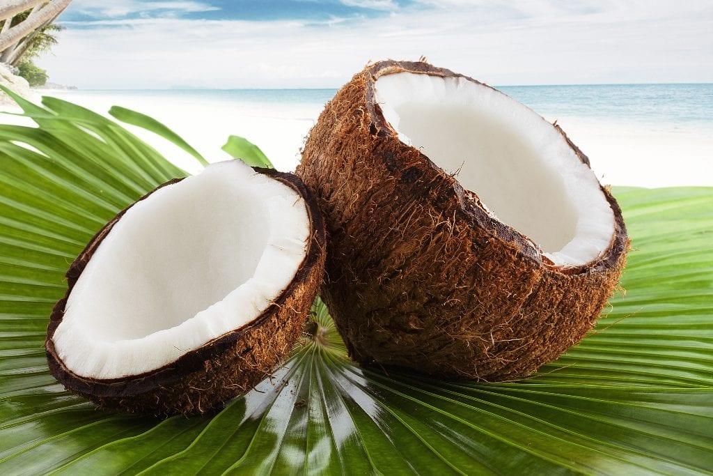 Cocco - Leagel