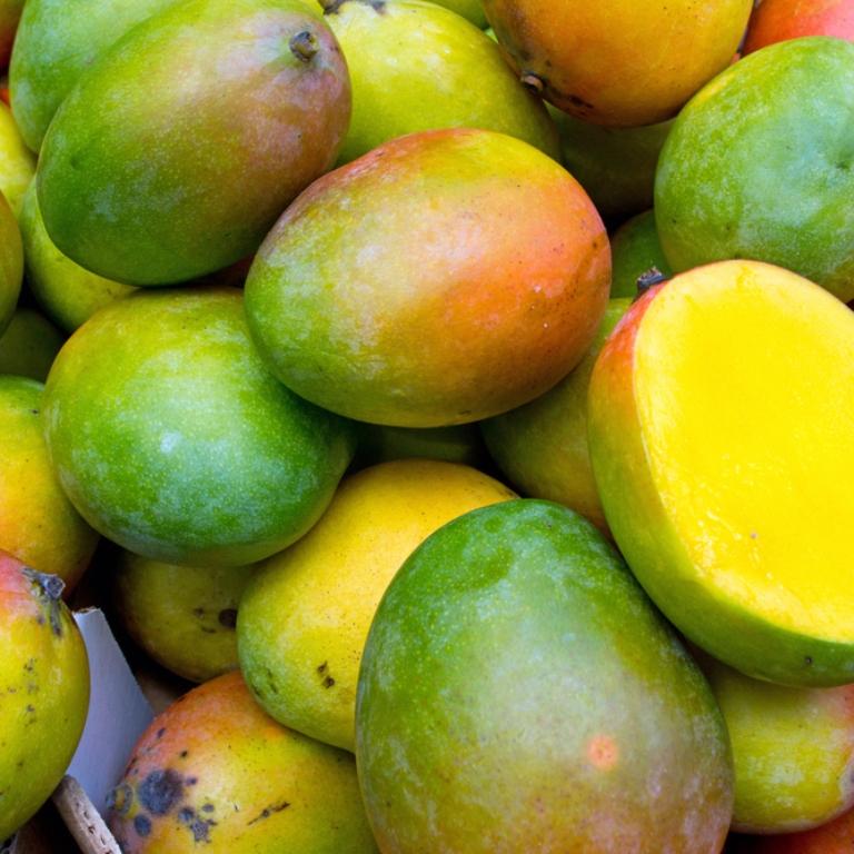mango - Leagel
